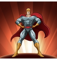 Proud superhero vector image