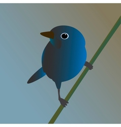 Blue bird on a branch vector