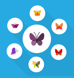flat moth set of violet wing summer insect vector image vector image