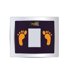 Body fat scale isolated vector
