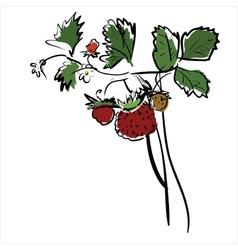 Cartoon red strawberry vector image vector image