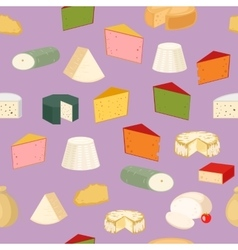 Cheese pattern vector image