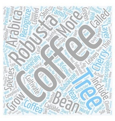 The anatomy of a coffee tree text background vector