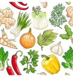 Vegetable pattern with herbs on white vector