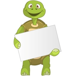 Funny turtle holding box vector
