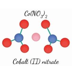 Cobalt II nitrate CoN2O6 molecule vector image vector image