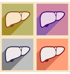 Icons of assembly human liver in flat style vector