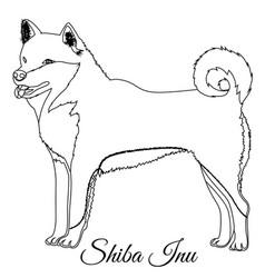 Shiba inu dog outline vector