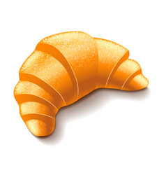 Croissant isolated on white vector