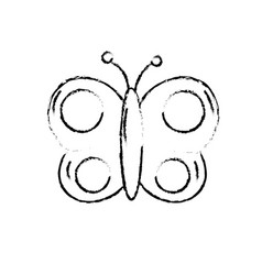 Figure beauty butterfly animal with wings vector