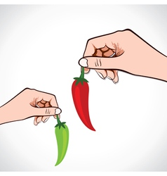 Green and red chilli in hand vector