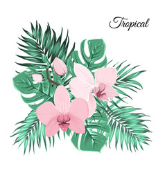 Pink orchid bouquet with green tropical leaves vector