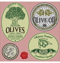 Set of templates with olive tree and oil vector