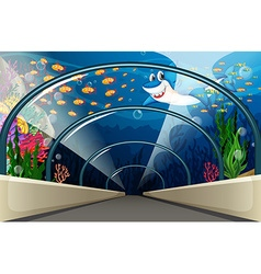 Public Aquarium with fish and coral reef vector image