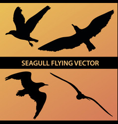 Set of silhouette seagull flying 4 in 1 on sunset vector