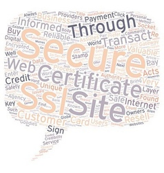 Safe and secure online payments with ssl vector