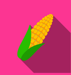 corn icon flate singe vegetables icon from the vector image