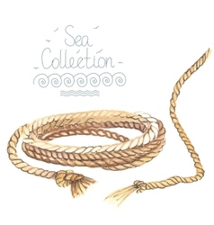 Watercolor nautical rope vector