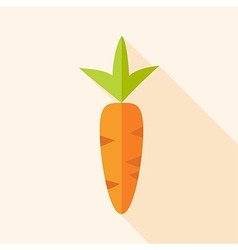 Natural carrot vector image vector image