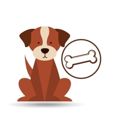 veterinary dog care bone food icon vector image