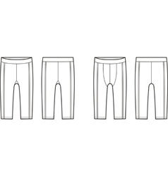 Sport briefs vector image vector image