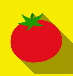 tomato icon flate singe vegetables icon from the vector image vector image