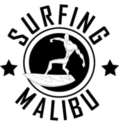 Surfer emblem vector image