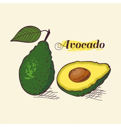 Avocado vector