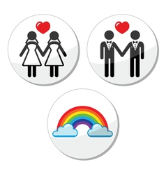Gay lesbian marriage rainbow icons set vector image vector image