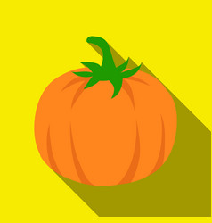 pumpkin icon flate singe vegetables icon from the vector image vector image