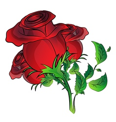 red rose on white background vector image vector image