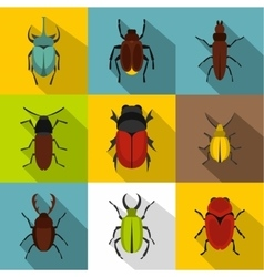 Species of beetles icons set flat style vector