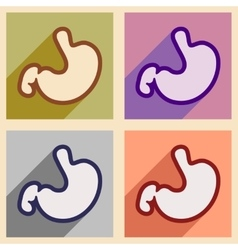 Icons of assembly human stomach in flat style vector