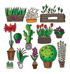 Set of indoor plants vector