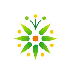 Green leaf bio star logo vector