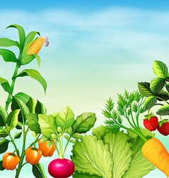 Many types of vegetables vector