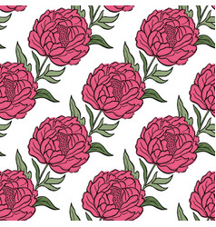 Seamless floral pattern peony flowers and vector