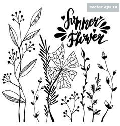 summer flower vector image vector image