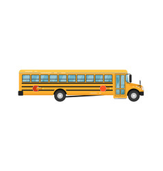 Yellow school bus isolated vector