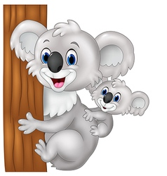 Cartoon funny baby koala on mother back vector