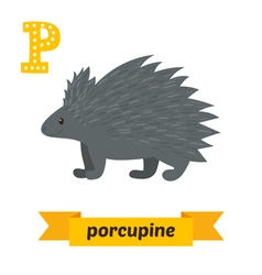 Porcupine P letter Cute children animal alphabet vector image