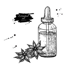 Anise star essential oil bottle and heap of spices vector