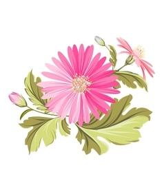Chrysanthemum bud vector image vector image