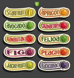Fruits and berries labels vector