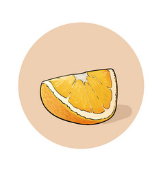 Orange juicy fresh slice of orange vector