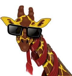 giraffe in sunglasses vector image
