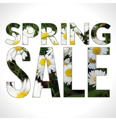 Spring sale typography composition vector