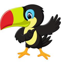 cartoon happy bird toucan vector image vector image