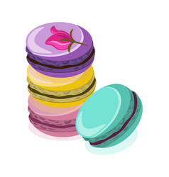 Delicious macaroon colorful dessert vector