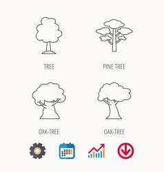 Pine tree oak-tree icons vector